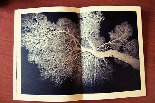 libro-4